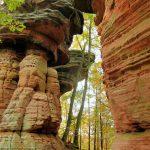 Im Pfälzerwald gibt es sehr viel Sandstein